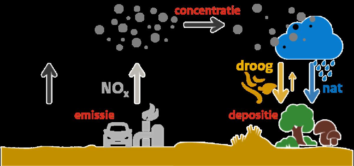 Uitleg hoe stikstof werkt